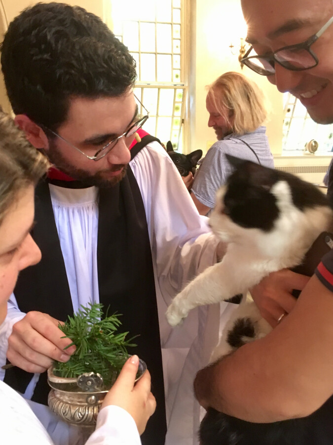 Blessing of the Animals 2017 3
