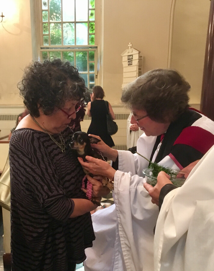 Blessing of the Animals 2017 16