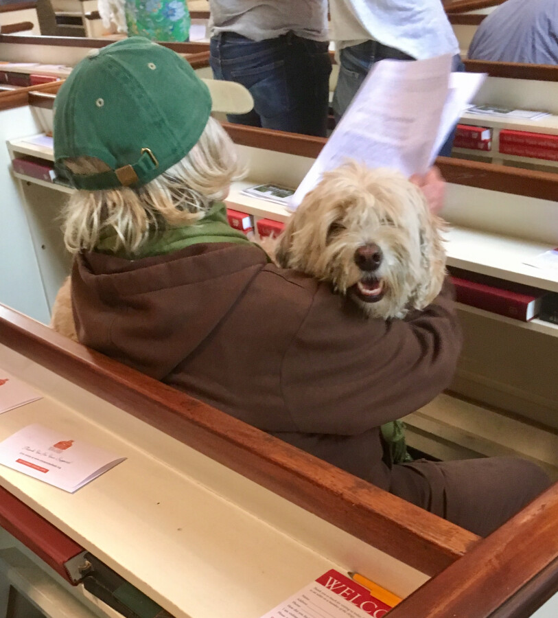 Blessing of the Animals 2017 28