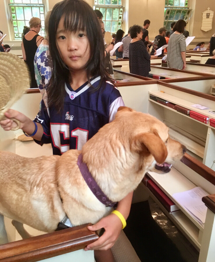 Blessing of the Animals 2017 27